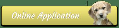 Online Application button