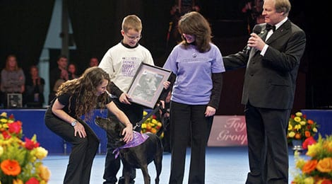 Philadelphia National Dog Show for Purina Pro Plan
